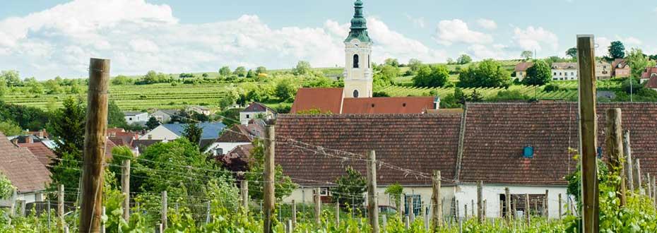 Online Agentur im Weinviertel bei Wien